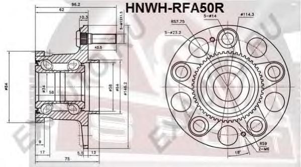 Ступица задняя с кольцом абс. ASVA (HNWHRFA50R)