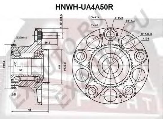 Ступица задняя с кольцом абс. ASVA (HNWHUA4A50R)